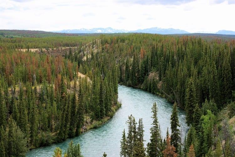 Chilko River – Canada